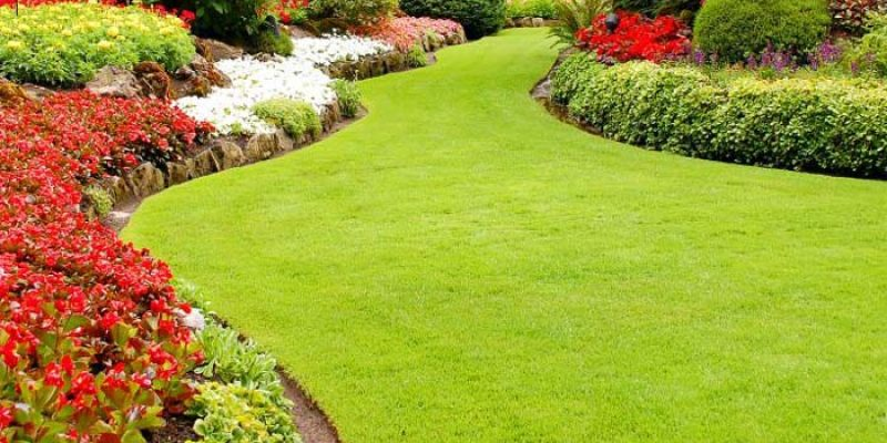 Commercial Landscape Maintenance Services Provider