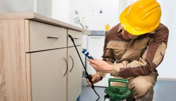 Hiring Effective Pest Control Services